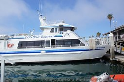 Condor Express Whale Watching Boat docked at Santa Barbara.jpg