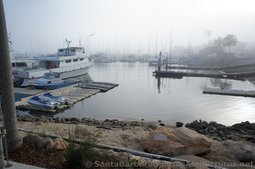 Yachts & Boats docked at Santa Barbara Harbor.jpg